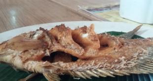 Ikan Gurame Rumah Makan Wulan Sari